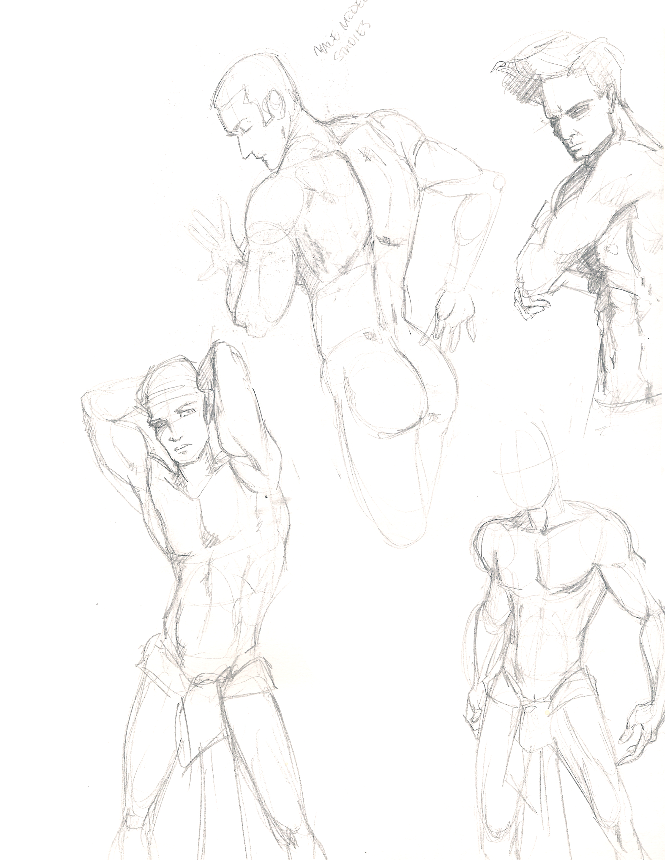 Gallery Images And Information Figure Drawing Reference ...
